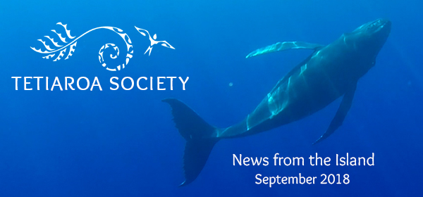 September newsletter features humpback whales