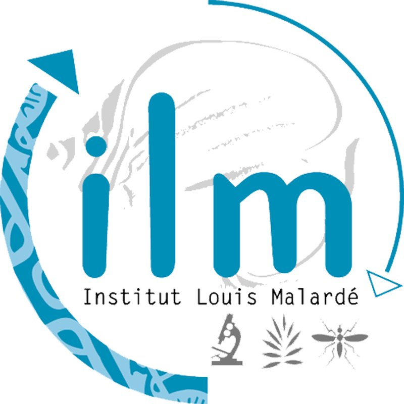 institute lotus malardé