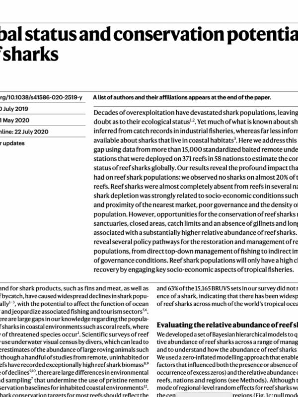 Global status and conservation potential of reef sharks