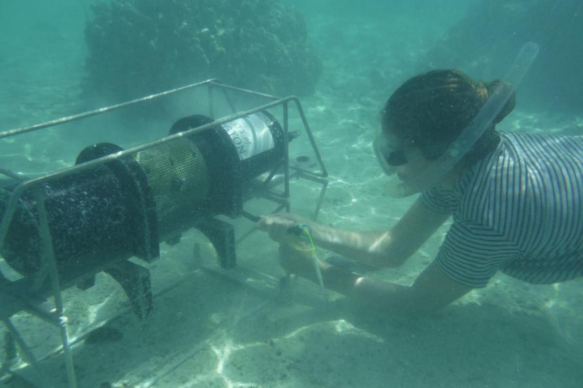 Undersea instruments that autonomously measure pH, oxygen, and other chemical indicators of reef health.