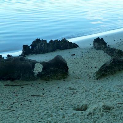 Marae on the beach on motu Horoatera